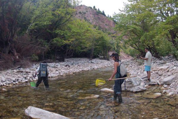 Φωτογραφία δειγματοληψιών σε ποτάμι